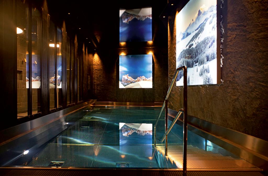 Chalet Aspen piscine